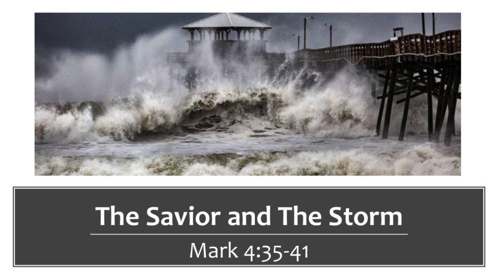 The Savior and The Storm Image
